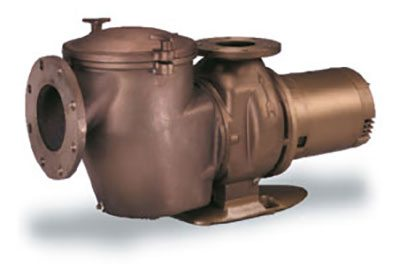 Commercial Swimming Pool Pumps From Southeast Pools in ChampionsGate Florida